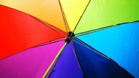 Transgender Life Insurance
